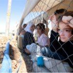 Refugees Fence